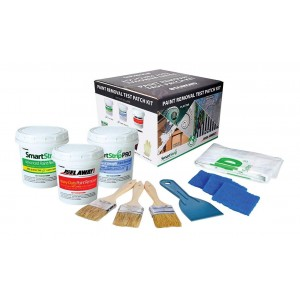 Dumond Peel Away Complete Paint Removal Test Patch Kit
